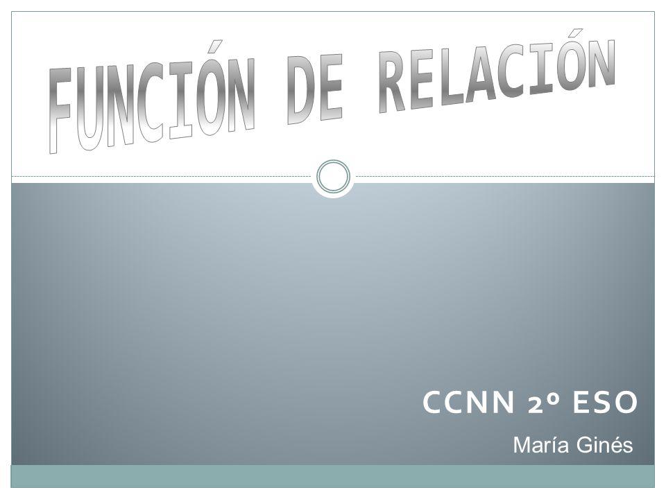 FUNCIÓN DE RELACIÓN CCNN 2º ESO María Ginés