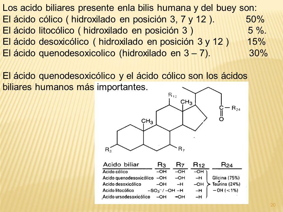 Los acido biliares presente enla bilis humana y del buey son: