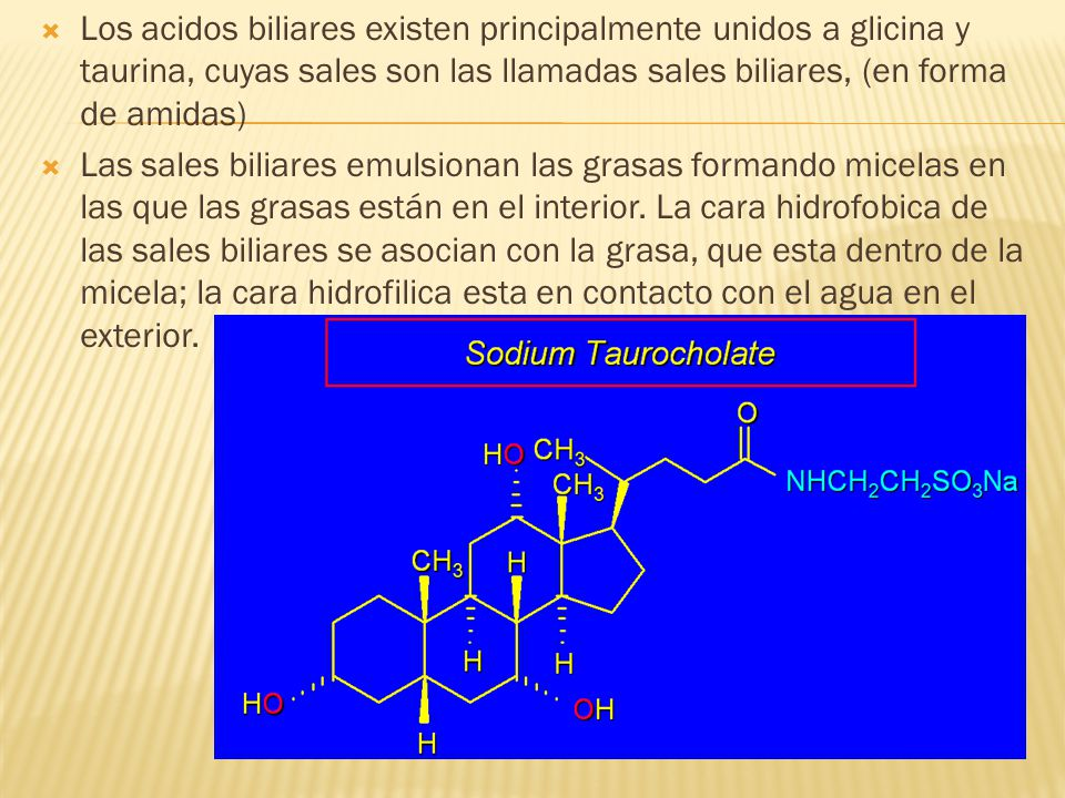 Los acidos biliares existen principalmente unidos a glicina y taurina, cuyas sales son las llamadas sales biliares, (en forma de amidas)