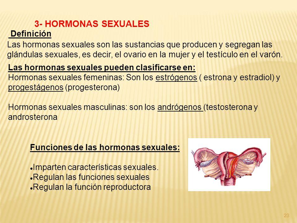 3- HORMONAS SEXUALES Definición