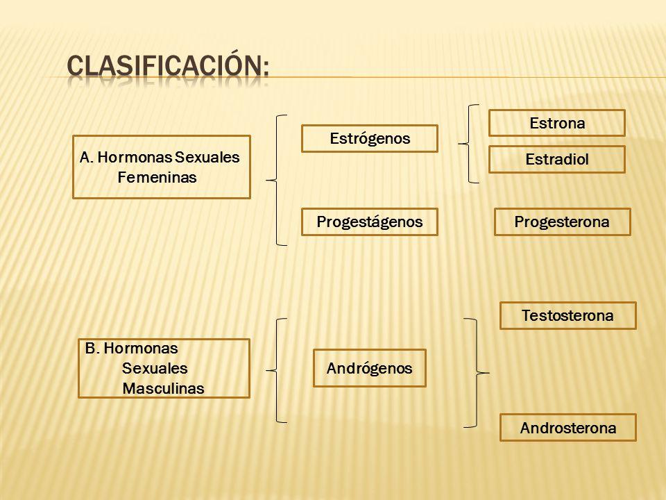 Clasificación: Estrona Estrógenos A. Hormonas Sexuales Femeninas