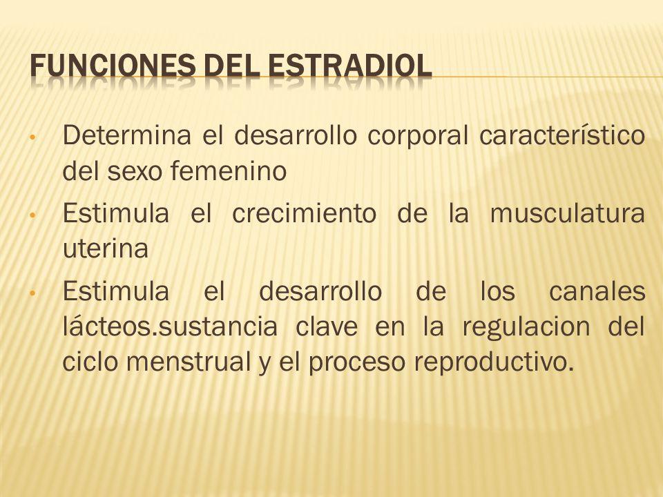 Funciones del estradiol