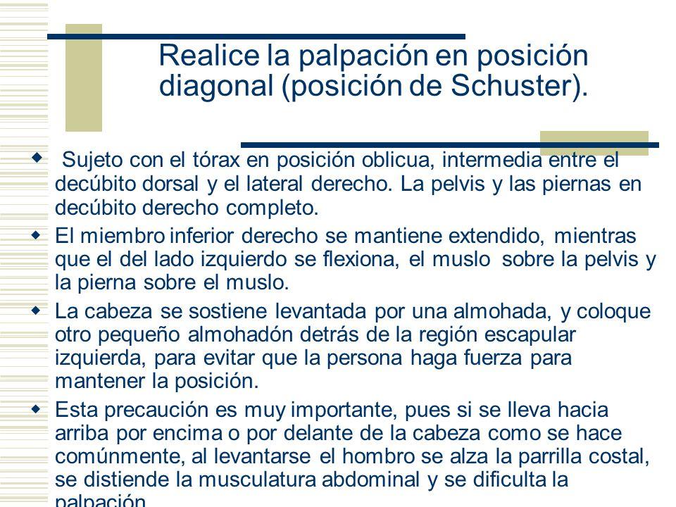 Realice la palpación en posición diagonal (posición de Schuster).
