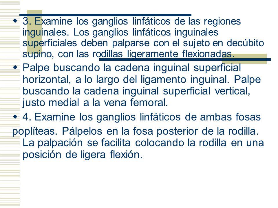 3. Examine los ganglios linfáticos de las regiones inguinales