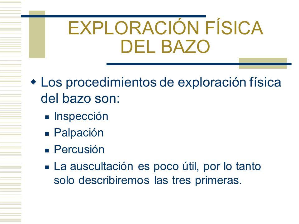 EXPLORACIÓN FÍSICA DEL BAZO