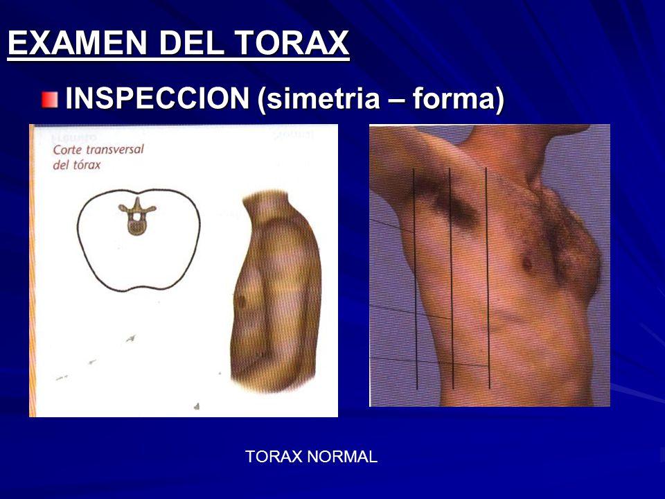 EXAMEN DEL TORAX INSPECCION (simetria – forma) TORAX NORMAL