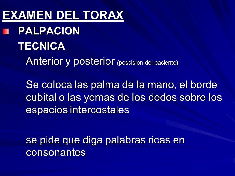 EXAMEN DEL TORAX PALPACION TECNICA