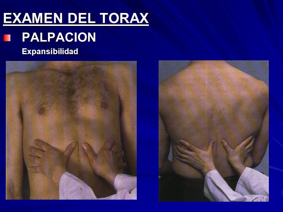 EXAMEN DEL TORAX PALPACION Expansibilidad