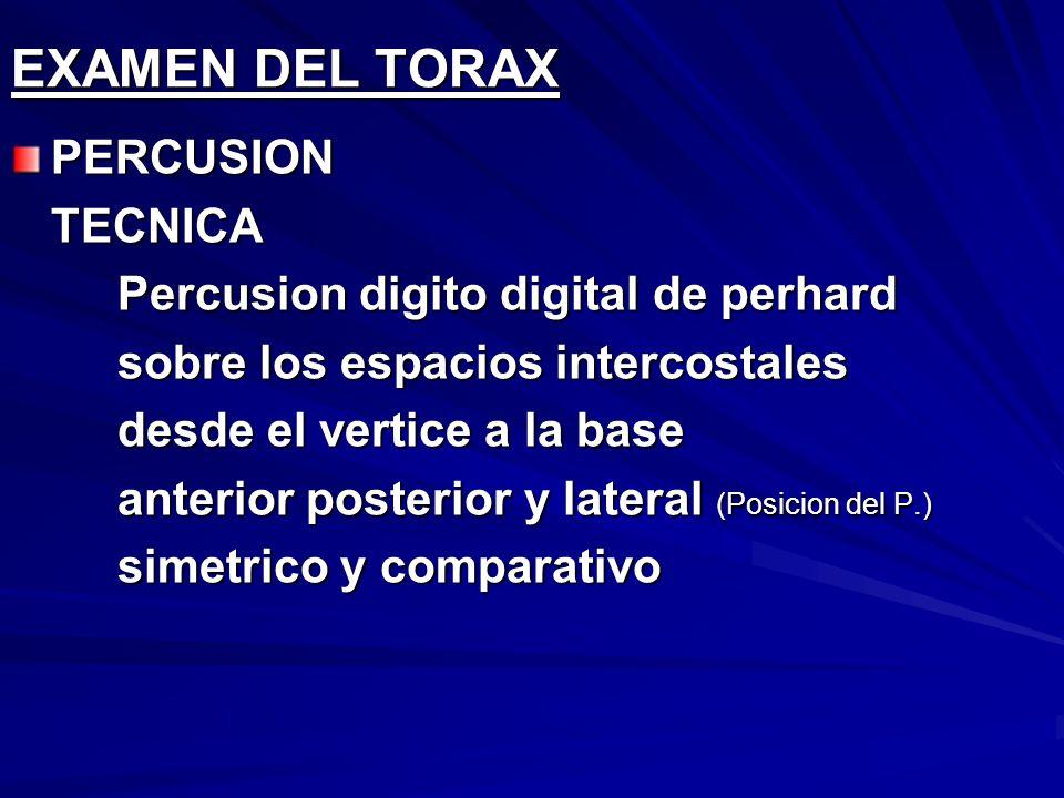 EXAMEN DEL TORAX PERCUSION TECNICA Percusion digito digital de perhard