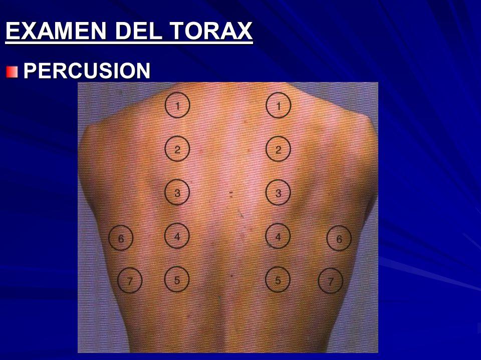 EXAMEN DEL TORAX PERCUSION