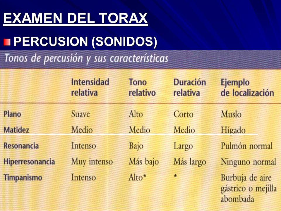 EXAMEN DEL TORAX PERCUSION (SONIDOS)