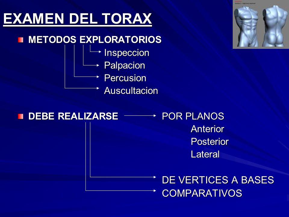 EXAMEN DEL TORAX COMPARATIVOS METODOS EXPLORATORIOS Inspeccion