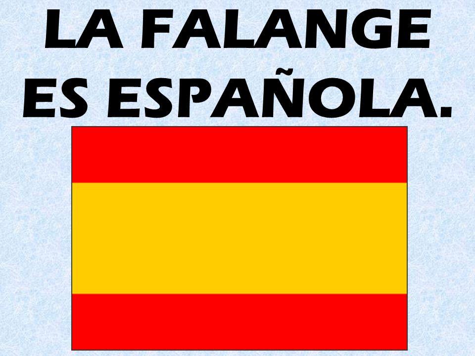 LA FALANGE ES ESPAÑOLA.