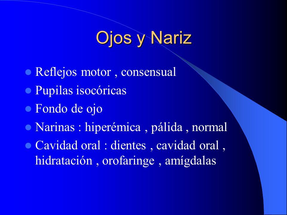 Ojos y Nariz Reflejos motor , consensual Pupilas isocóricas