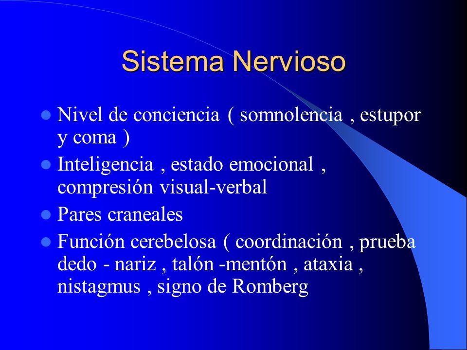 Sistema Nervioso Nivel de conciencia ( somnolencia , estupor y coma )