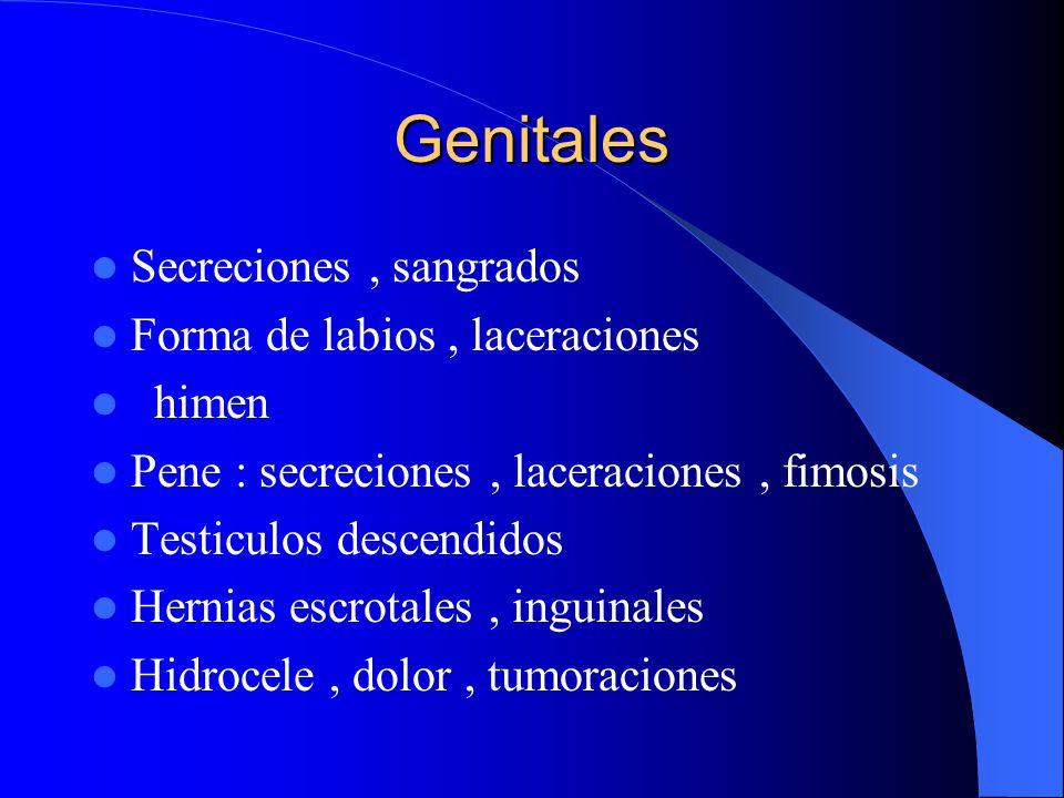 Genitales Secreciones , sangrados Forma de labios , laceraciones himen