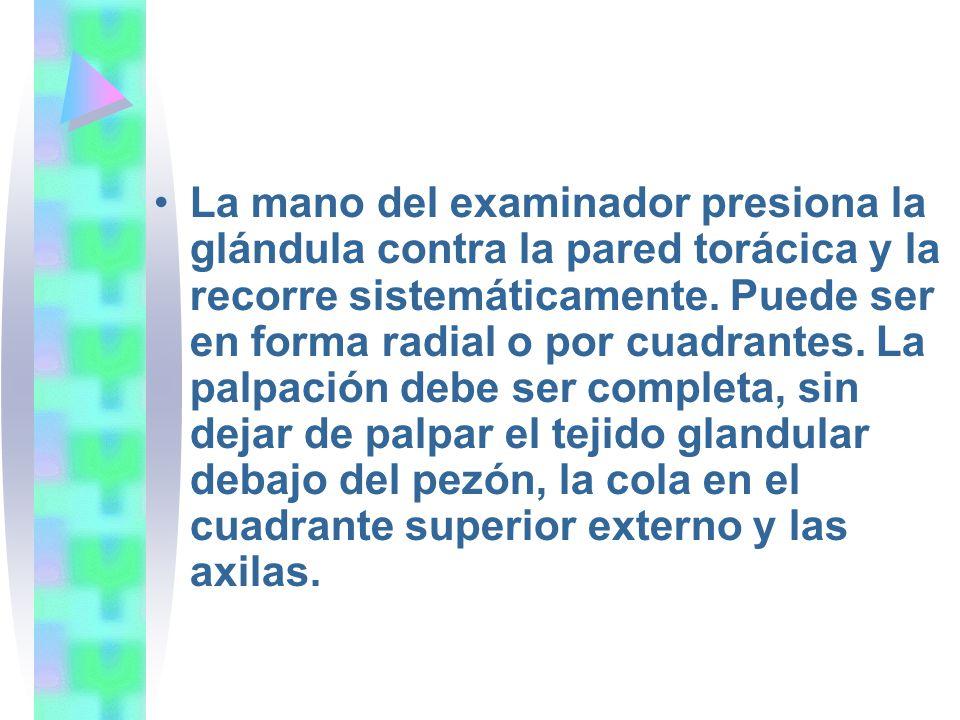 La mano del examinador presiona la glándula contra la pared torácica y la recorre sistemáticamente.