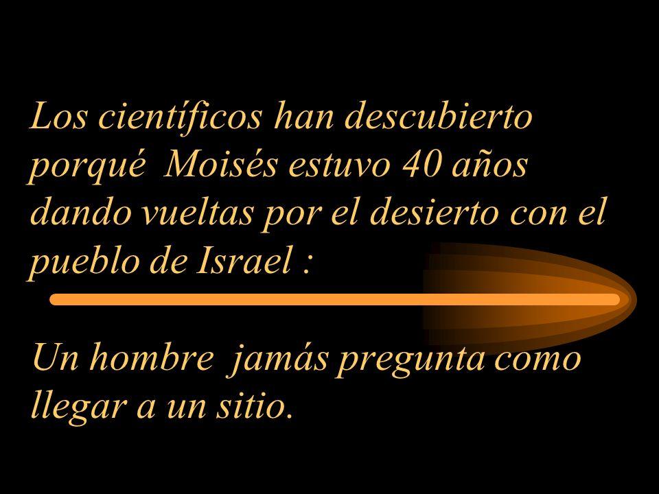 Los científicos han descubierto porqué Moisés estuvo 40 años dando vueltas por el desierto con el pueblo de Israel : Un hombre jamás pregunta como llegar a un sitio.