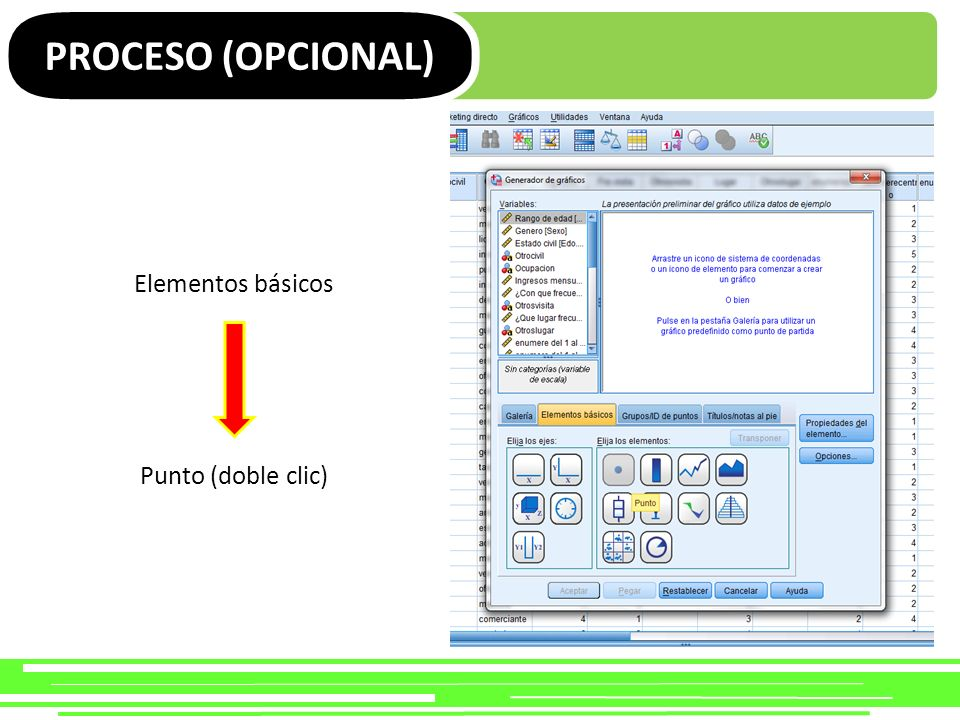 PROCESO (OPCIONAL) Elementos básicos Punto (doble clic)