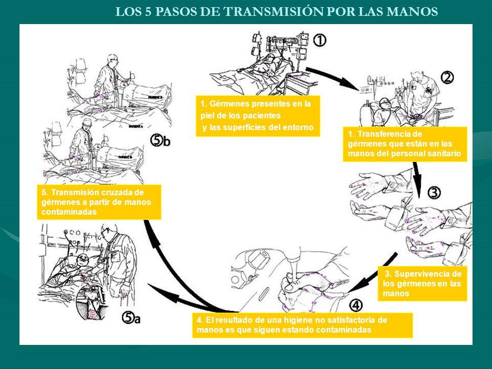 LOS 5 PASOS DE TRANSMISIÓN POR LAS MANOS