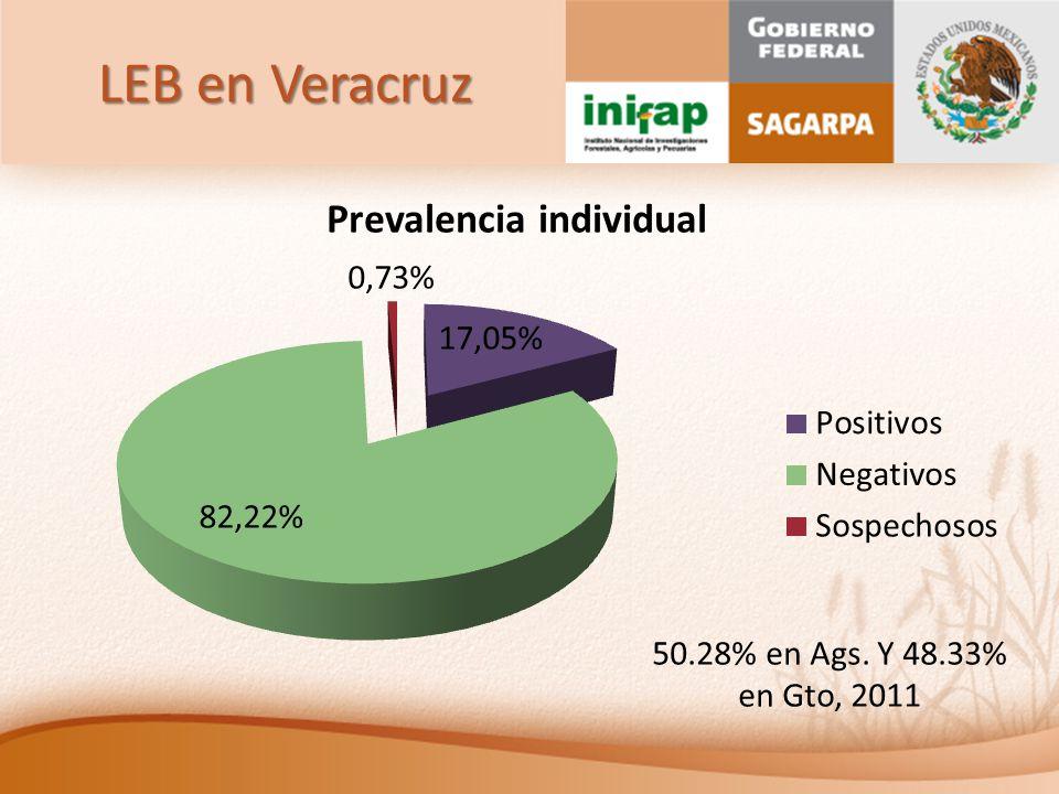 LEB en Veracruz 50.28% en Ags. Y 48.33% en Gto, 2011