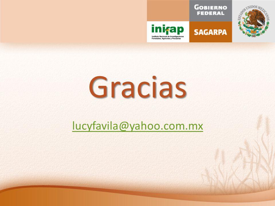 Gracias lucyfavila@yahoo.com.mx