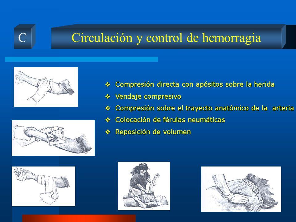 Circulación y control de hemorragia