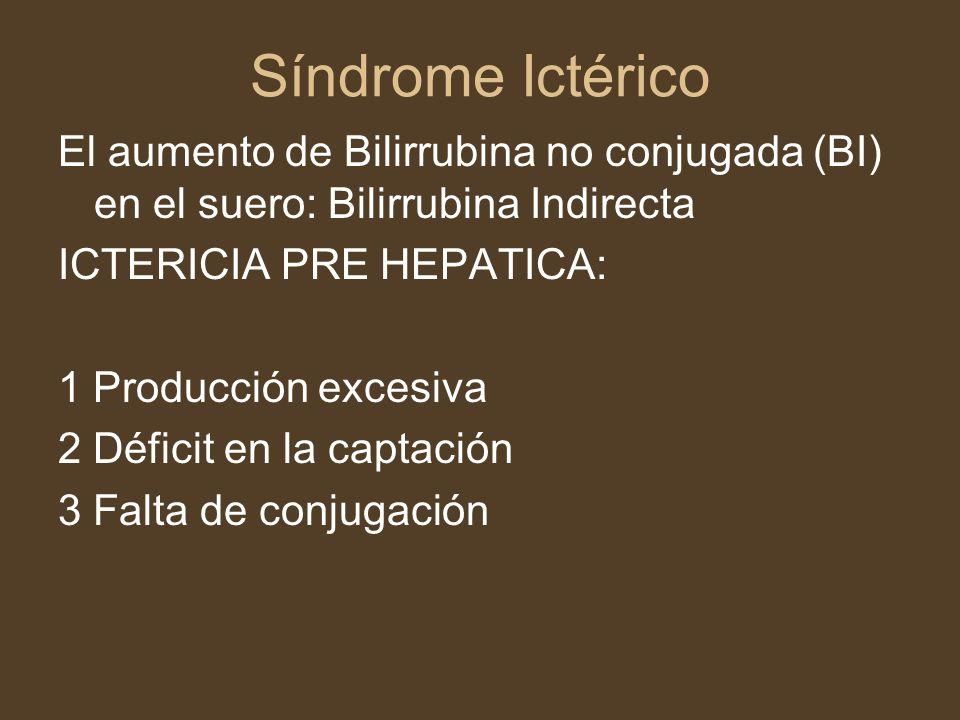 Síndrome Ictérico El aumento de Bilirrubina no conjugada (BI) en el suero: Bilirrubina Indirecta. ICTERICIA PRE HEPATICA: