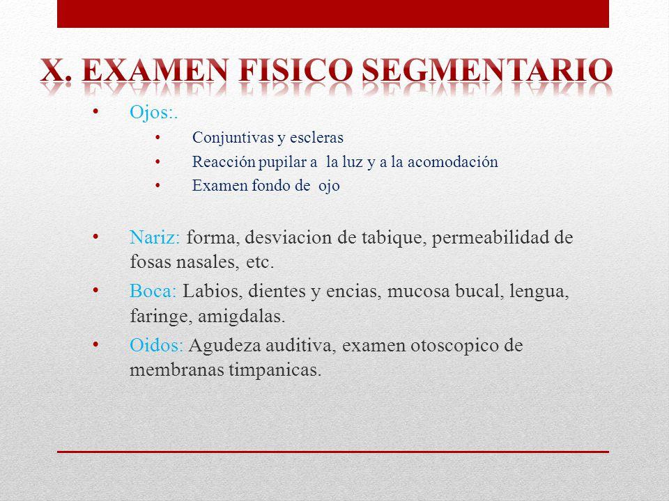 x. Examen fisico segmentario