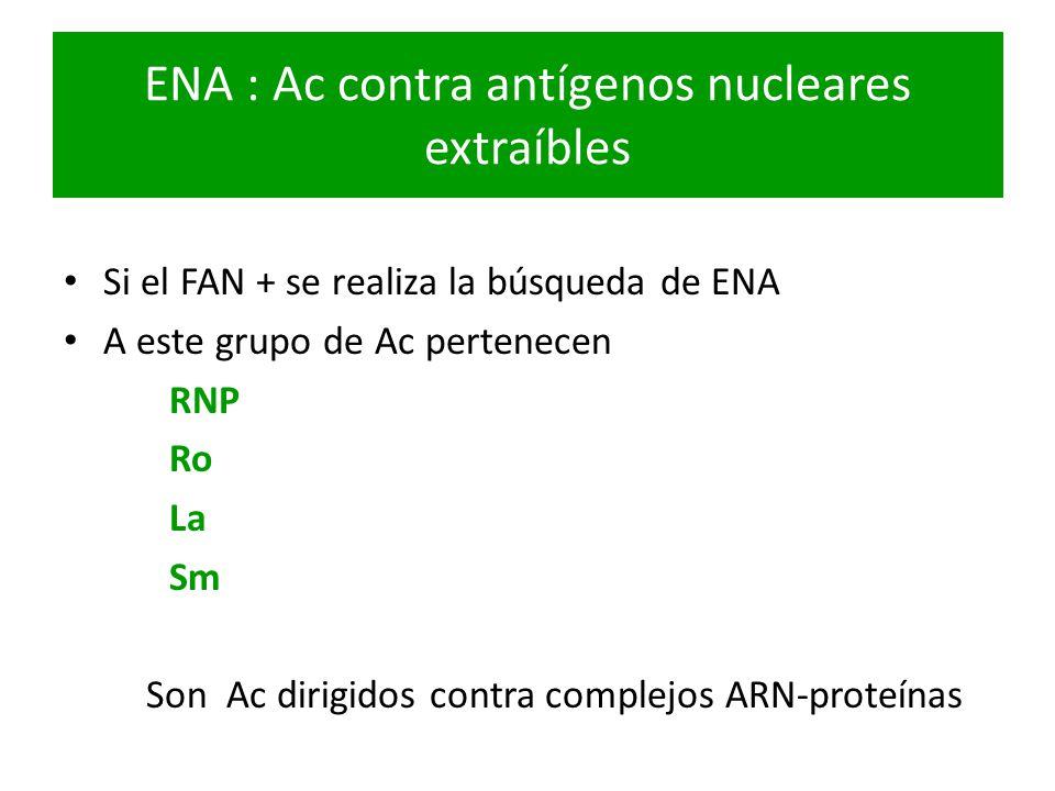 ENA : Ac contra antígenos nucleares extraíbles