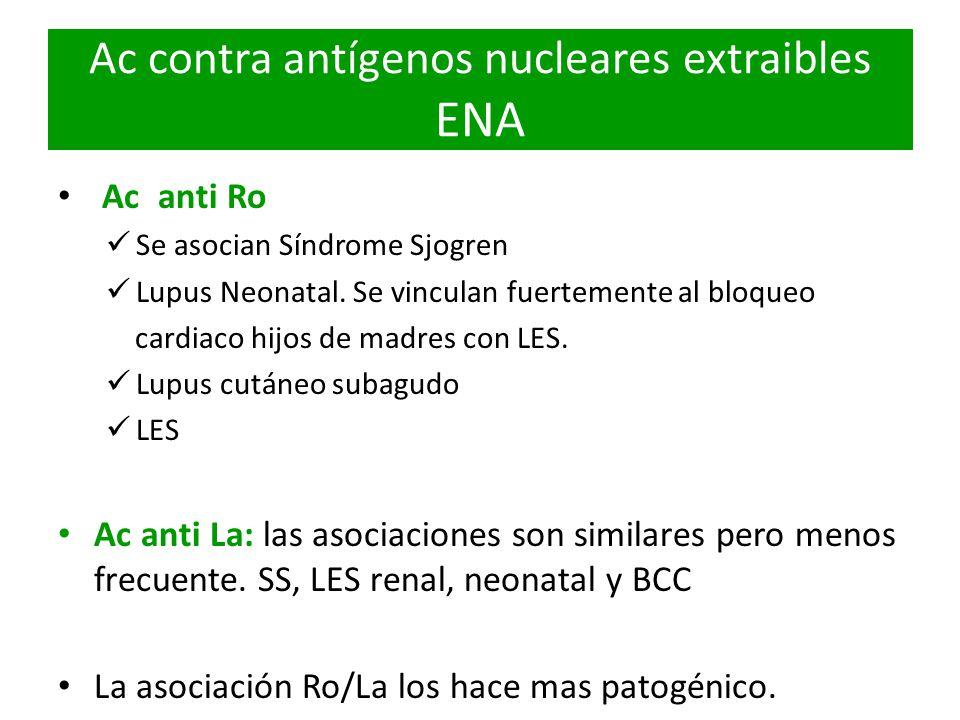 Ac contra antígenos nucleares extraibles ENA