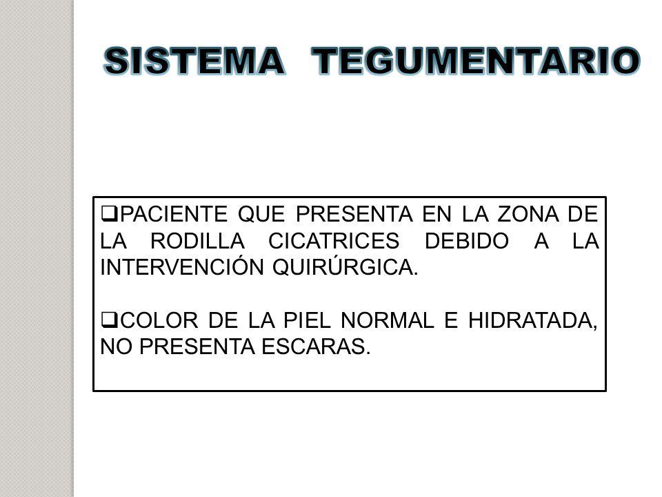 SISTEMA TEGUMENTARIO PACIENTE QUE PRESENTA EN LA ZONA DE LA RODILLA CICATRICES DEBIDO A LA INTERVENCIÓN QUIRÚRGICA.