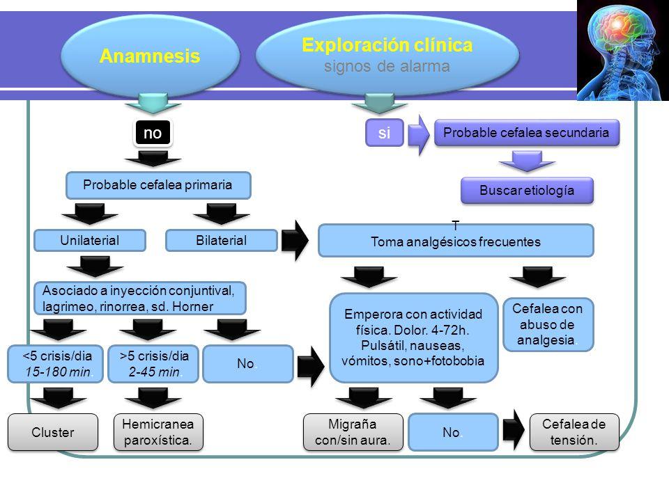 Anamnesis Exploración clínica