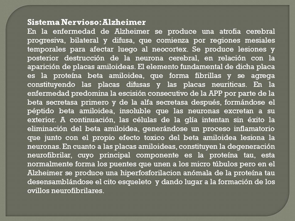 Sistema Nervioso: Alzheimer