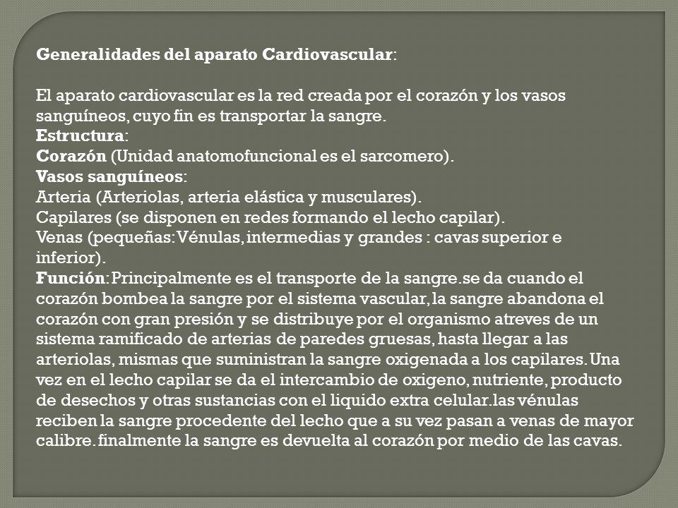 Generalidades del aparato Cardiovascular: