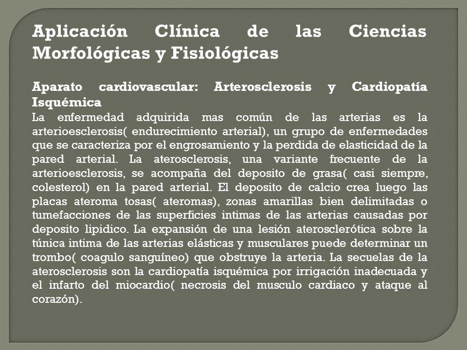 Aplicación Clínica de las Ciencias Morfológicas y Fisiológicas