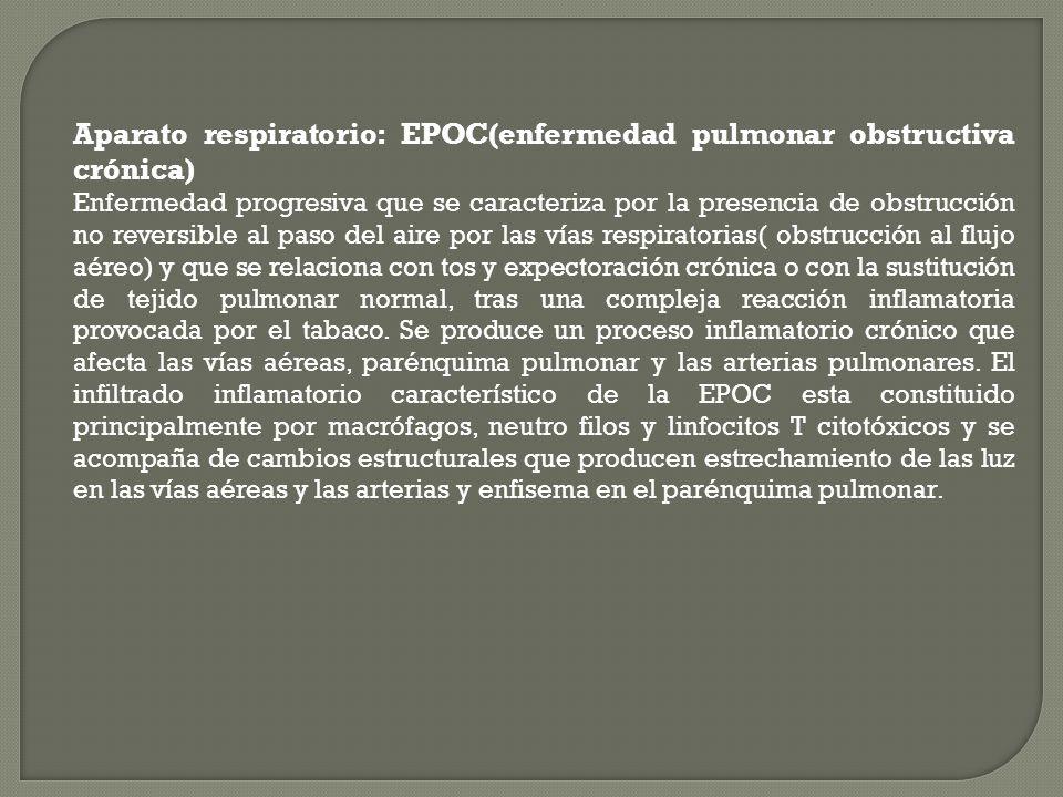 Aparato respiratorio: EPOC(enfermedad pulmonar obstructiva crónica)