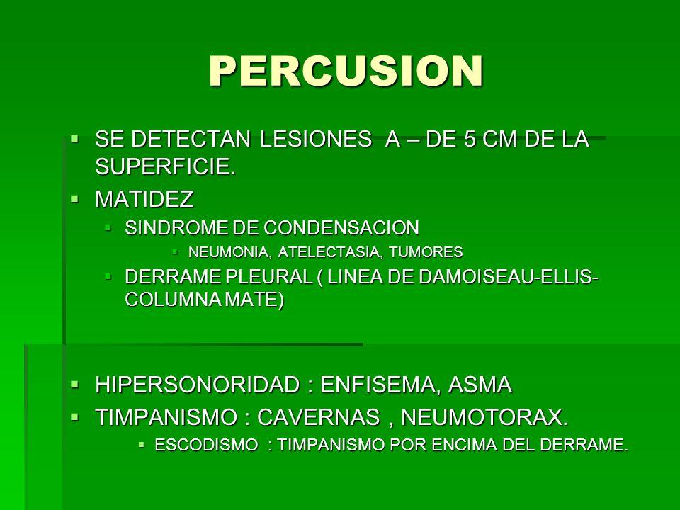 PERCUSION SE DETECTAN LESIONES A – DE 5 CM DE LA SUPERFICIE. MATIDEZ