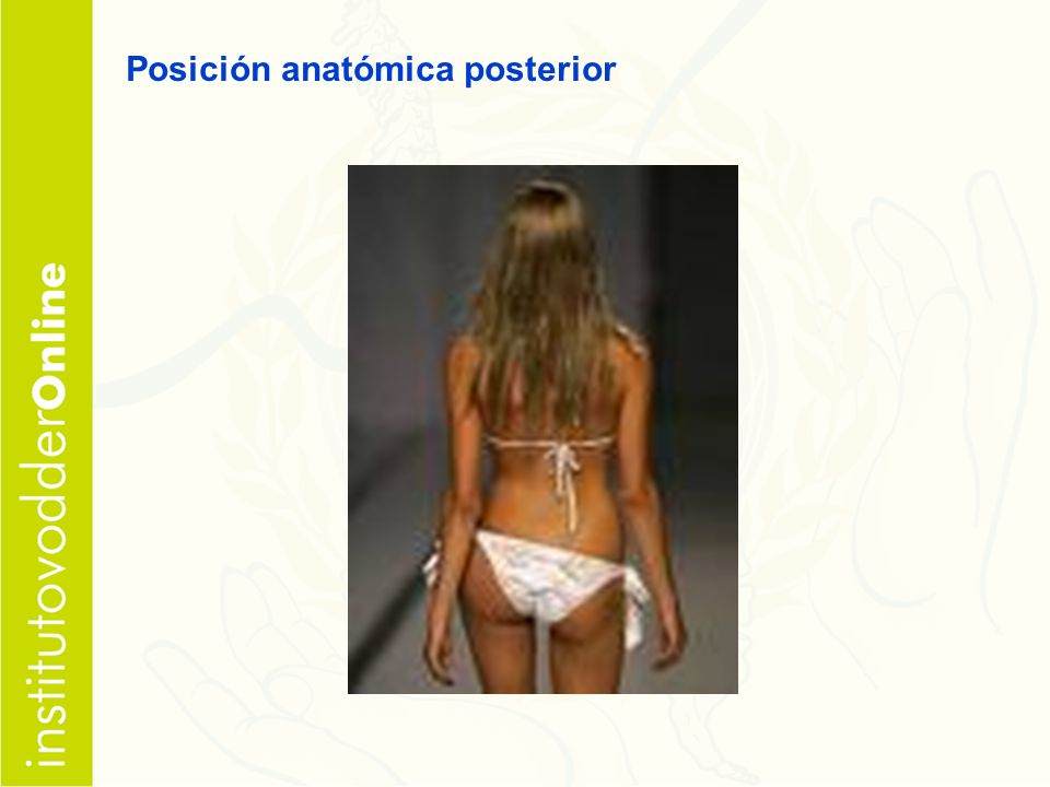 Posición anatómica posterior
