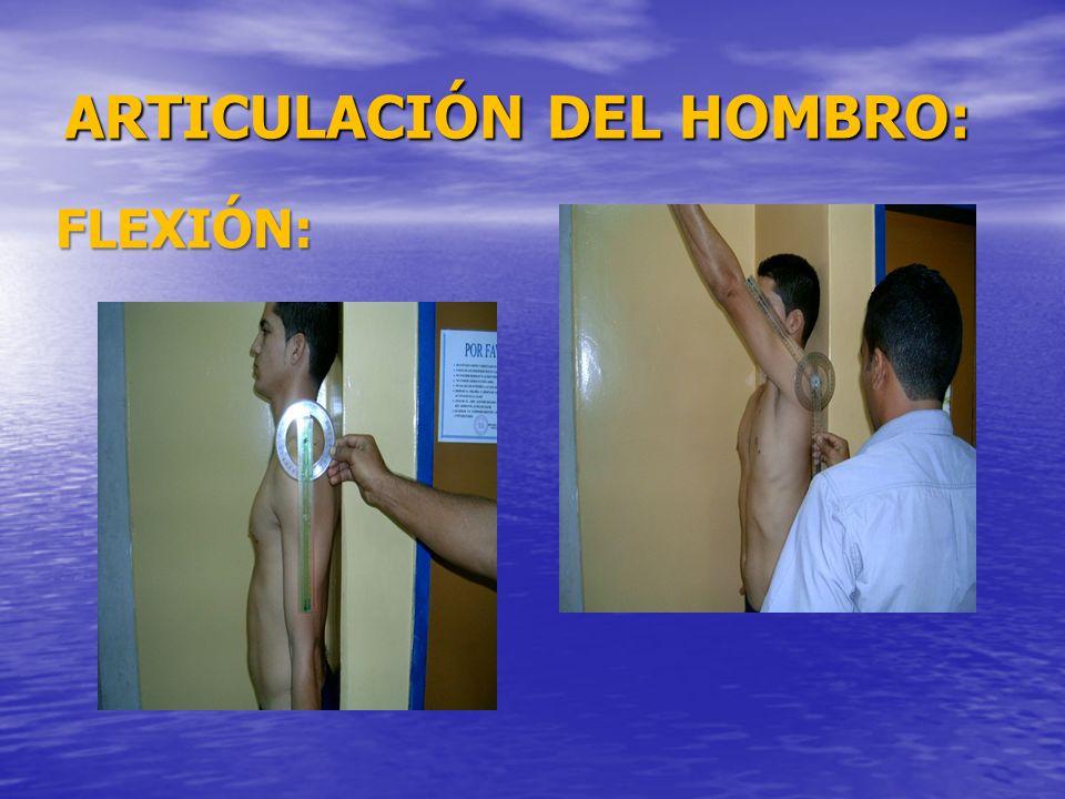 ARTICULACIÓN DEL HOMBRO: