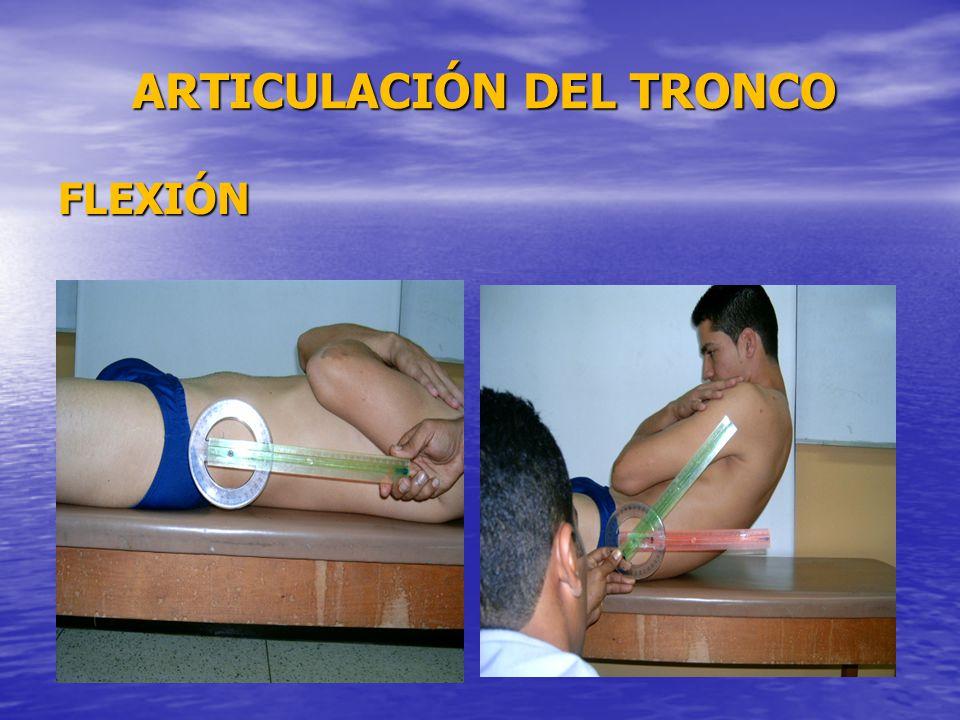 ARTICULACIÓN DEL TRONCO