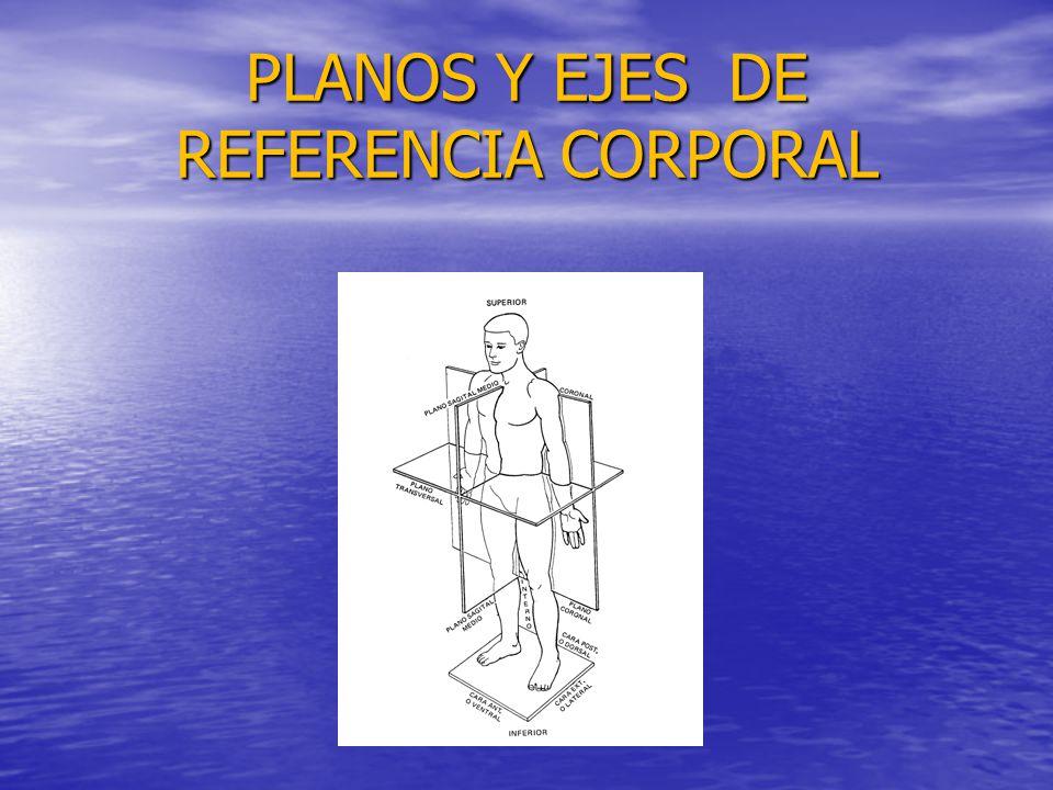 PLANOS Y EJES DE REFERENCIA CORPORAL