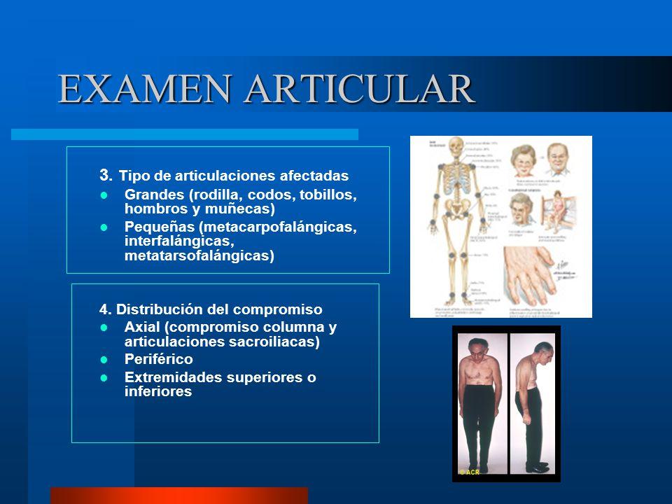 EXAMEN ARTICULAR 3. Tipo de articulaciones afectadas