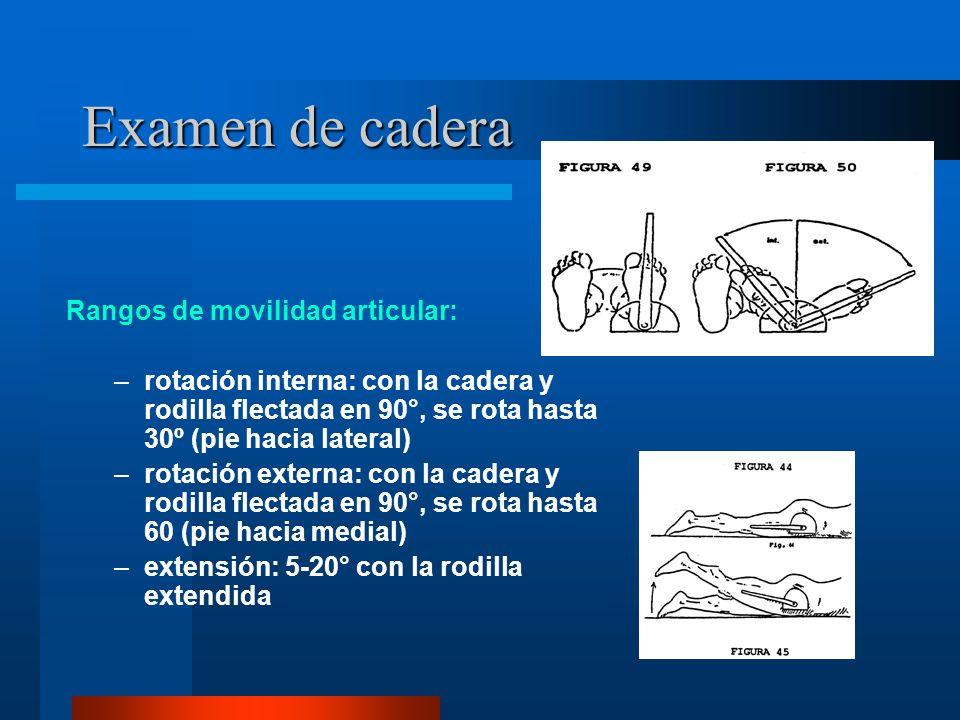 Examen de cadera Rangos de movilidad articular: