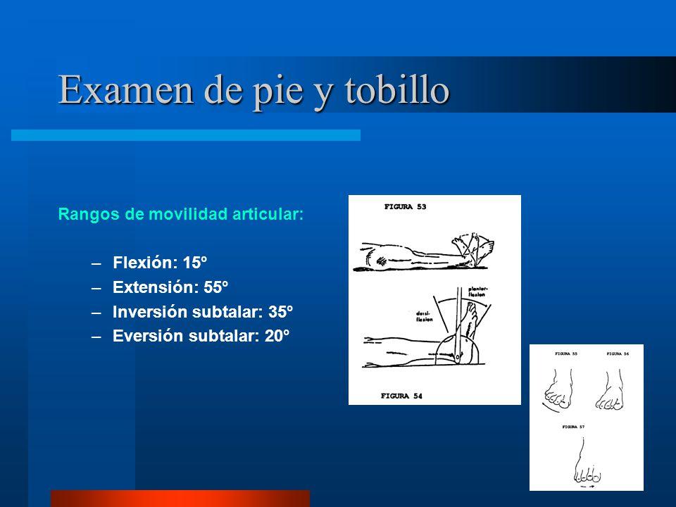 Examen de pie y tobillo Rangos de movilidad articular: Flexión: 15°