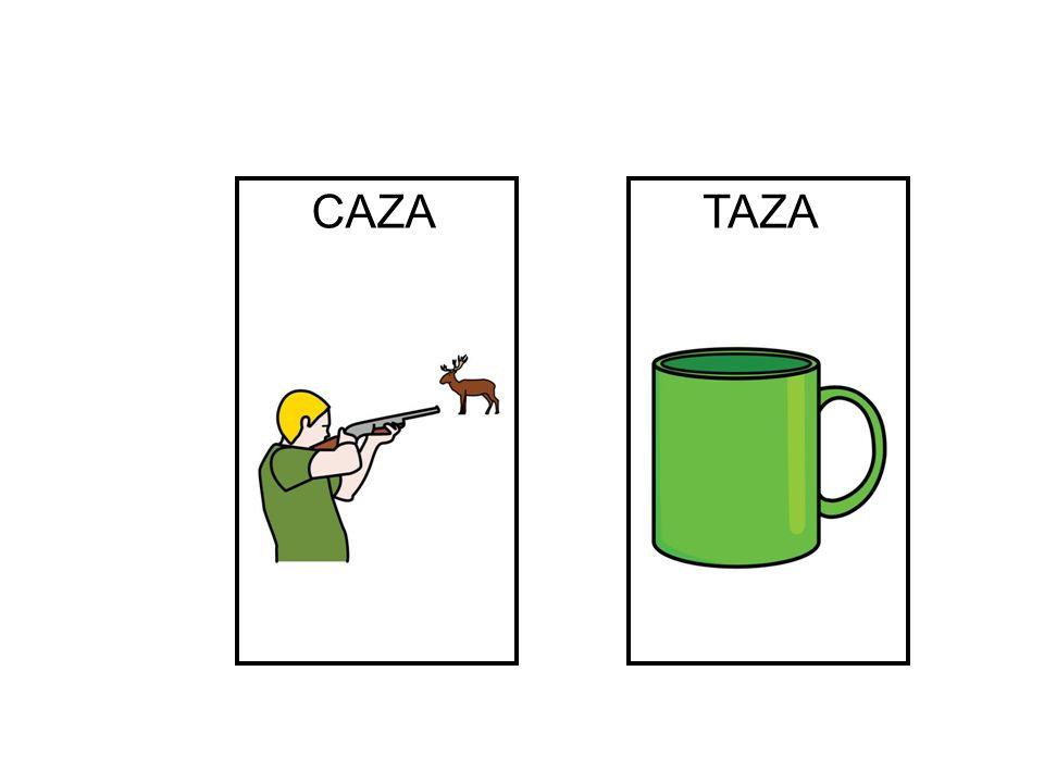 CAZA TAZA