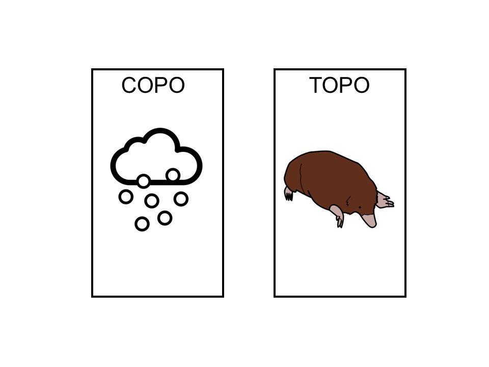 COPO TOPO