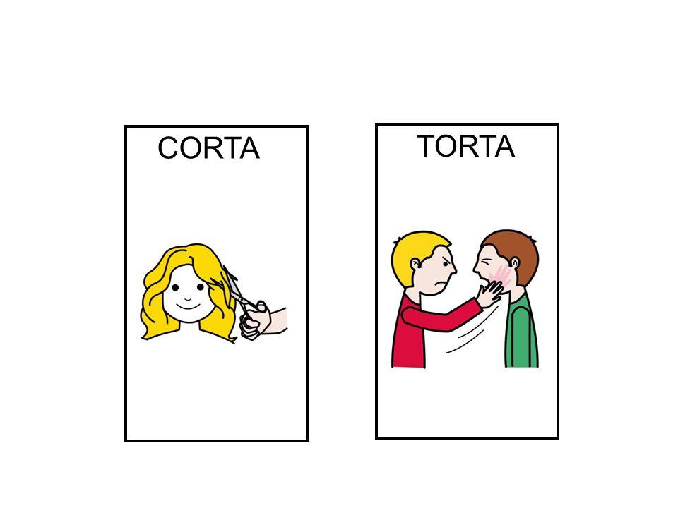 CORTA TORTA