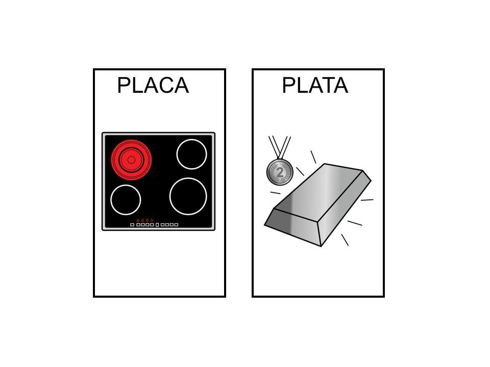 PLACA PLATA