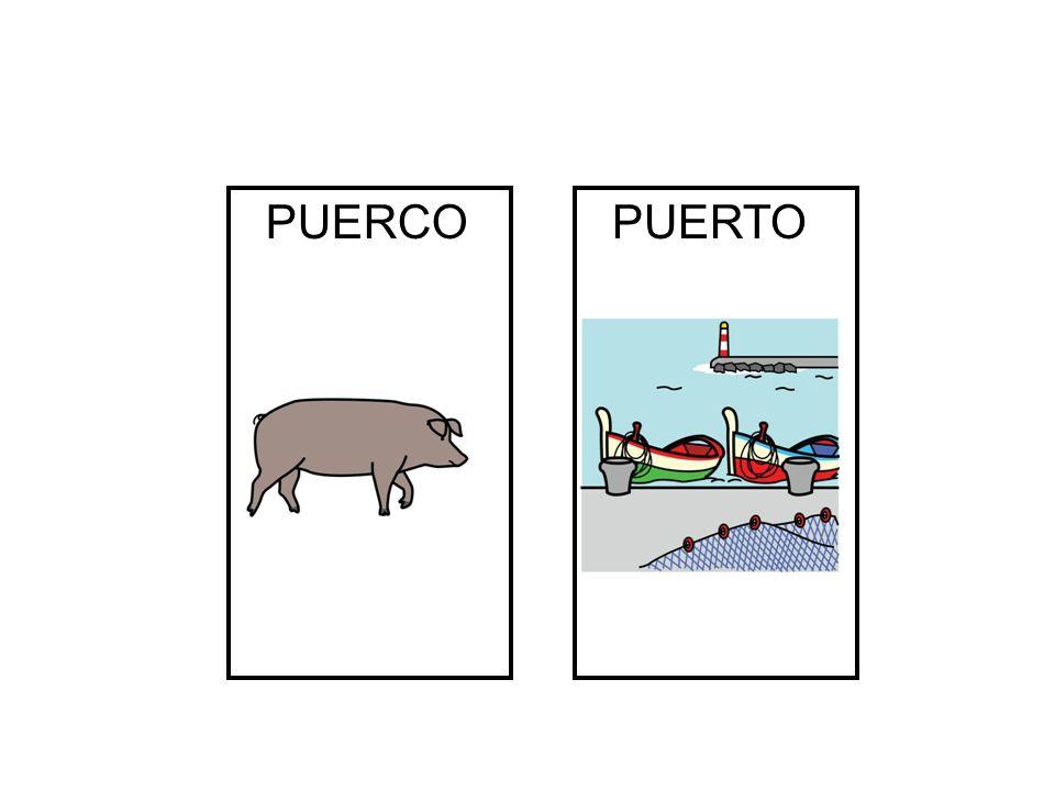 PUERCO PUERTO